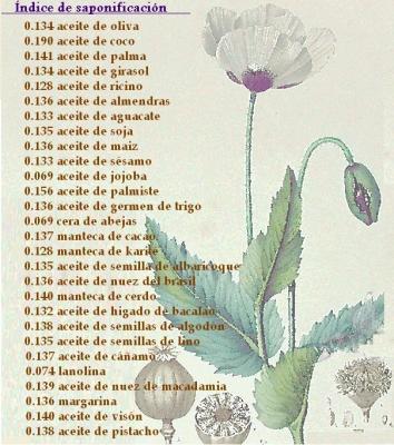 ELABORACIÓN DE JABÓN DOMÉSTICO
